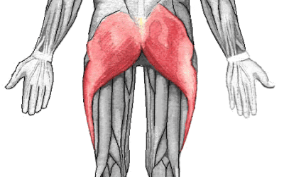 Simple gluteal exercise