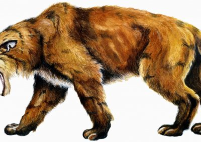 Stress: Attack of a saber-toothed cat? Or social isolation?